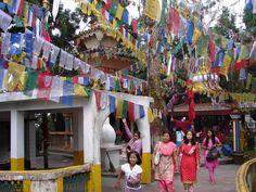 #magiaswiat #darjeeling #podróż #wakacje #zwiedzanie # indie #blog #świątynia #mahakala # Indie, Darjeeling, Fair Grounds, Blog, Fun, Darjeeling Tea, Blogging, Hilarious