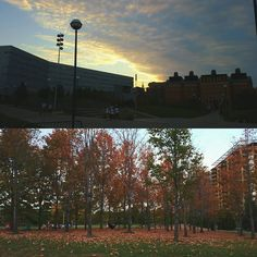 sexpress0_: uc was so beautiful today