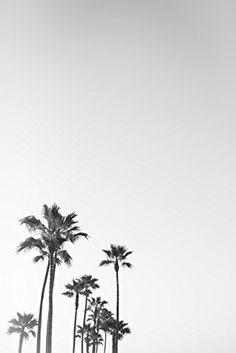 yuiend Noir et Blanc Californie Palmiers sur toile Art Print 30,5 x 40,6 cm