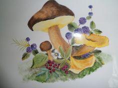 plaque de porte ou de villa motifs champignons