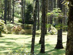http://alexandra-barbosa.blogspot.com.br/search?updated-max=2013-03-07T18:18:00-08:00=30