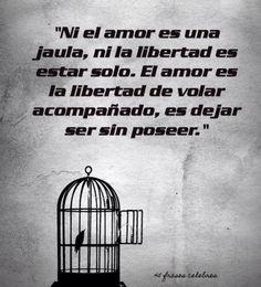〽️El amor es la libertad de volar acompañado, es dejar ser sin poseer...