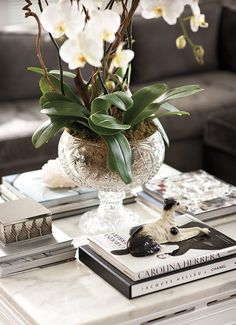 silviahomedecor_natureza_decoracao