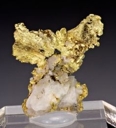 Gold // Red Ledge Mine, Washington, Washington District, Nevada Co., California, USA