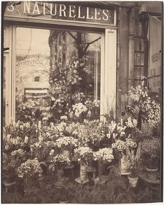 Eugène Atget (French, 1857–1927). Boutique Fleurs, 1925. The Metropolitan Museum of Art, New York. Gilman Collection, Purchase, Ann Tenenbaum and Thomas H. Lee Gift, 2005 (2005.100.344)