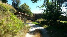 Paisaje ruta de los molinos de San Miguel Sidewalk, Plants, San Miguel, Paths, Scenery, Fotografia, Side Walkway, Walkway, Plant