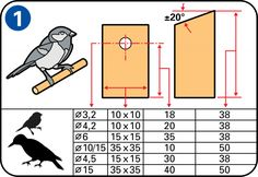 How to make a birdhouse - Decide on the right opening size