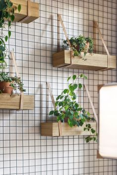 DIY Inspiration - Wood crates on the Wall with straps for herbs in the Kitchen