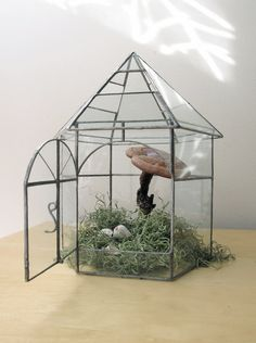 vintage greenhouse botanical garden glass terrarium