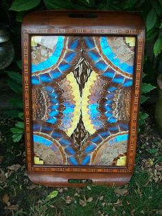 Large Art Deco Butterfly Wing Tray Brilliant Blue Morpho Inlaid Wood | eBay