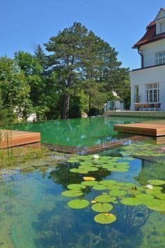 jardines y piscinas con agua salada
