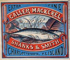Commercial label of Caller Mackerel, Shanks & Smith, Charlottetown.