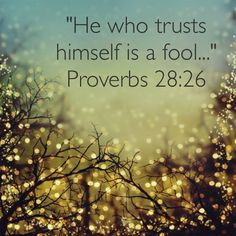 Proverbs 28:26 A person that trusts in their own heart or insight is a fool; but the one that walks in wisdom (counsel) will be delivered.