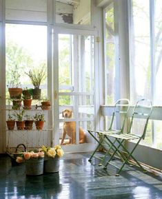 Screened in porch idea.  Maybe I could even get a dog :)