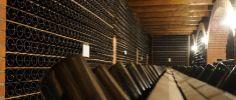 Wine tasting in Lake Garda at - Cantina Ricchi - Things To Do In Lake Garda