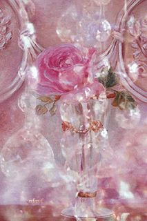Make your own magic Close your eyes and discover Your beautiful magic Flowers Gif, Exotic Flowers, Pretty Flowers, Beautiful Gif, Beautiful Roses, Imagenes Gift, Beau Gif, Birthday Wishes, Happy Birthday