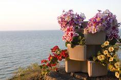 Venetian Vertical Garden sunset lifestyle pic.