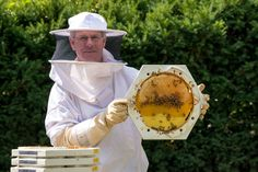 Bee Scientific - Benefiting bees, beekeepers and science