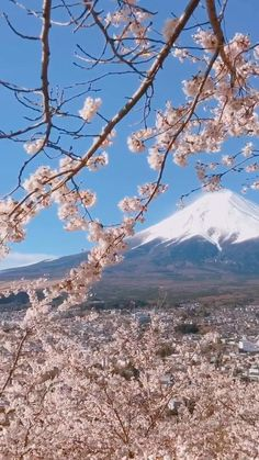 Aesthetic Photography Nature, Nature Aesthetic, Nature Photography, Travel Photography, Japon Tokyo, Beautiful Places In Japan, Fuji Mountain, Wallpaper Nature Flowers, Aesthetic Japan