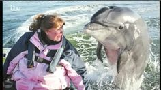 Wild Ireland: Dindle's Dolphin called Fungi