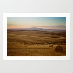 Wheat fields of the Overberg  Art Print by Light Wanderer - $16.00