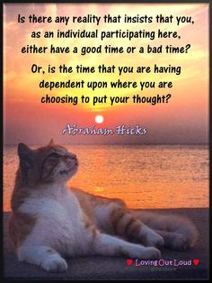"""Is there any reality that insists that you, as an individual participating here, either have a good time or a bad time?  Or, is the time you're having dependent upon where you are choosing to put your thoughts?""  ★ ~~Abraham-Hicks"