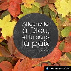 Job 22:21 « Attache-toi à Dieu, et tu auras la paix » Believe Quotes, My Life Quotes, Bible Scriptures, Bible Quotes, Prayer For Wife, Jesus Reigns, Daily Positive Affirmations, Religion, Reading Passages