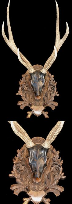 Vyrezávané lebka s Sambar Stag parožie # 1
