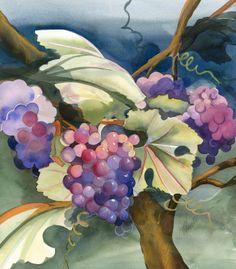 violet grapes on vine