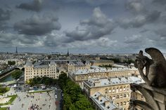 Watching Paris From Notre Dame