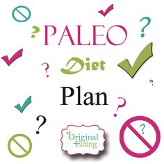Paleo Diet Food List WhatS In  WhatS Out  Paleo Diet Food