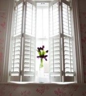 How Hard Is It To Find These Shutters Last Thing I Need