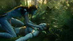 """James Cameron will be making the four """"Avatar"""" sequels are the same time, and he's not rushing the process. Avatar Costumes, Avatar Cosplay, Stephen Lang, James Cameron, Michelle Rodriguez, Fantasy World, Fantasy Art, Avatar Land, Avatar Babies"""