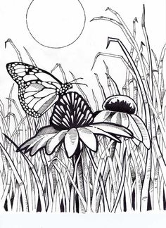 14 Free Printable Coloring Pages for Adults butterflies Free Printable Coloring Pages for Adults butterflies. 14 Free Printable Coloring Pages for Adults butterflies. Color Pages Vaseoring Page Floral Book Free Printable Free Printable Coloring Pages, Coloring Book Pages, Coloring Sheets, Zentangle, Art Quilling, Butterfly Coloring Page, Free Coloring, Colorful Pictures, Line Drawing