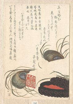 Totoya Hokkei (Japanese, 1780–1850). Seal-stone and Seal-ink with Peacock Feathers, from Spring Rain Surimono Album (Harusame surimono-jō), vol. 1, probably 1817. Edo period (1615–1868). Japan. The Metropolitan Museum of Art, New York. H. O. Havemeyer Collection, Bequest of Mrs. H. O. Havemeyer, 1929 (JP1945) #peacock