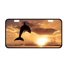 "11.8"" X 6.1"" Dolphin Novelty Aluminum Front License Plate Car Tag, Black Trim Plates Tags - Brought to you by Avarsha.com"