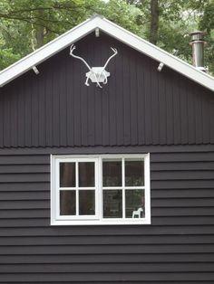 6 persoonshuis! Blijf op de hoogte van vakantiehuis Boshuis Nij Hildenberg | Boshuis Nijhildenberg Appelscha Friesland