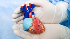 TOP 10: Greatest Breakthroughs in Cardiovascular Health That Can Save You In 2015