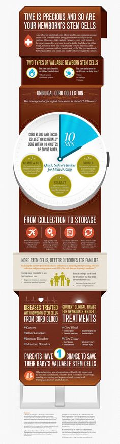 Cord Blood Collection Infographic. I just like the idea of the info graphic forming an object... nothing else. Illustrator-unknown
