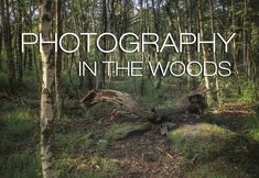 In this episode i have an evening walk in the woods to try out some woodland landscape photography. woodland photography - don't look for trees woodland phot. Into The Woods Quotes, Walk In The Woods, Woods Photography, Landscape Photography, Woodland, Walking, Trees, Inspiration, Biblical Inspiration