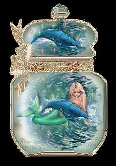 Dolphins animal graphics