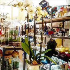 Une nouvelle boutique dédiée aux artisans-créateurs Made in France vient d'ouvrir