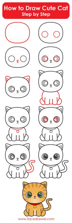 How To Draw Cute Cat Step By Infographic
