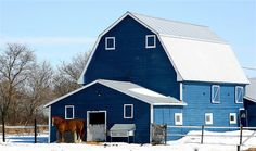 Blue Rodeo by Digital Agent - I've never seen a blue barn....but I'd even take the horse to get the barn!