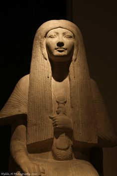 Priestess Merit, wife of Maya Maya was the Minister of the Interior and Overseer of the Treasury during the reign of Pharaohs Tutankhamun, Ay and Horemheb (approx. 1333 BC – 1290 BC) of the 18th dynasty of Ancient Egypt. He was also an important official and noted for restoring the burials of several earlier pharaohs in the Royal Necropolis in the years following the deaths of Tutankhamun and Ay.