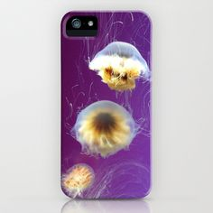 Grape Jellies iPhone & iPod Case by Artstruck Again - $35.00