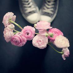 Converse & Ranunculus