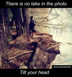 There's no lake in this photo. - When You See It : Tricky photos that will make you look twice. The pictures might look normal at first glance, but when you see it…