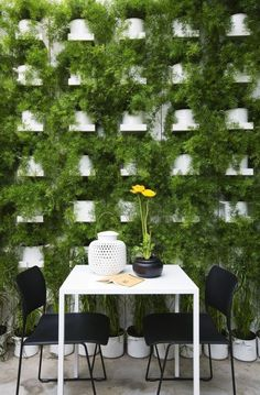 1. Green Wall Vibrancy The vibrant green wall pictured above seems to climb miles above this quaint table for two. I can imagine that while...
