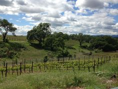 A visit to Aonair Winery, hidden in the hills of Napa.  Small, intimate, with delicious wines.